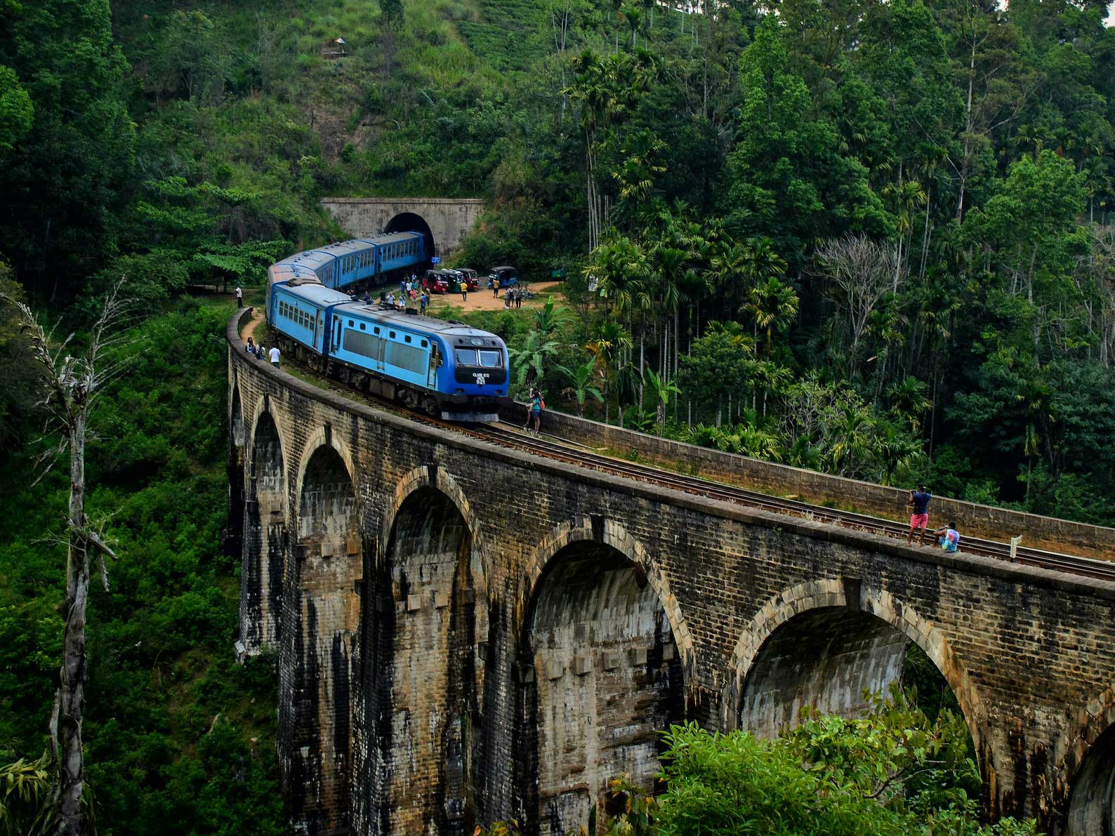Scenic Tour by Train